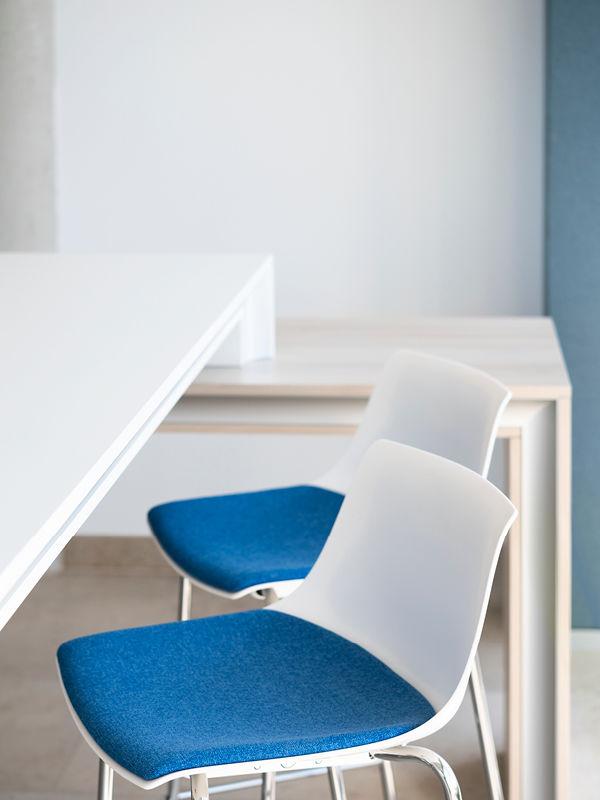PALMBERG Stühle in Weiß mit blauer Sitzfläche