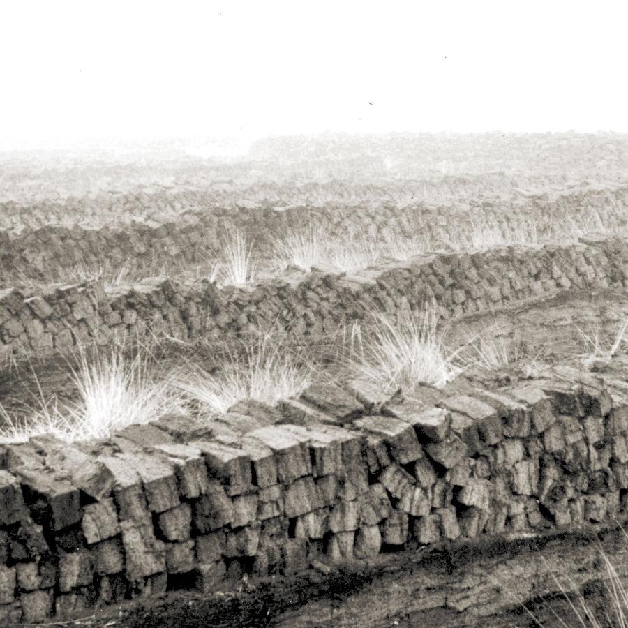 Historisches Bild: Gestochener Torf (Gebr. Brill Substrate, Georgsdorf)
